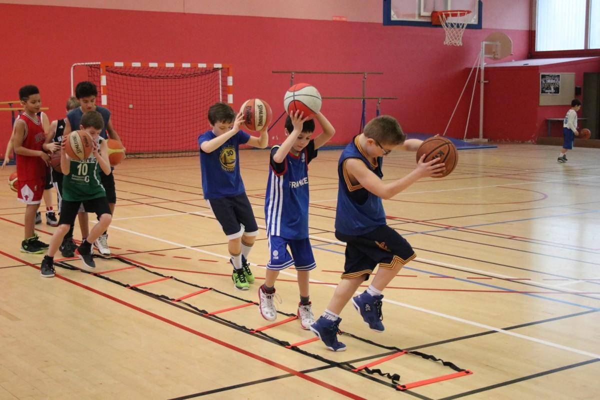 Stage Basket de reprise du 24 au 28 Août