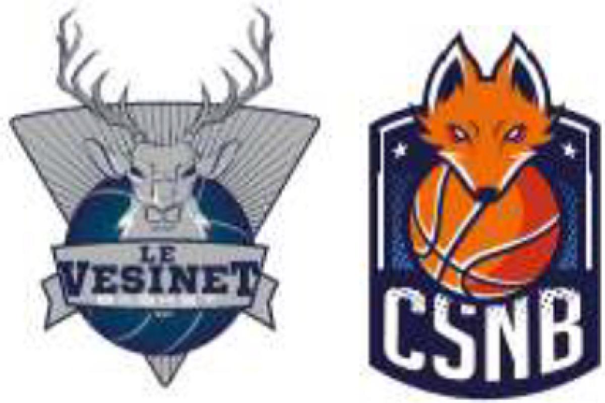 Vez Bucks vs Noisy Foxes Samedi 7 Mars à Matalou 20h30